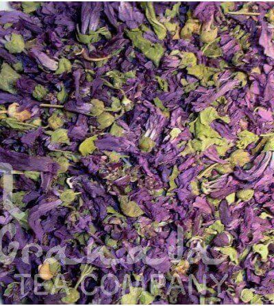 Malva Flor, Extra
