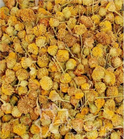 Manzanilla Amarga Flor