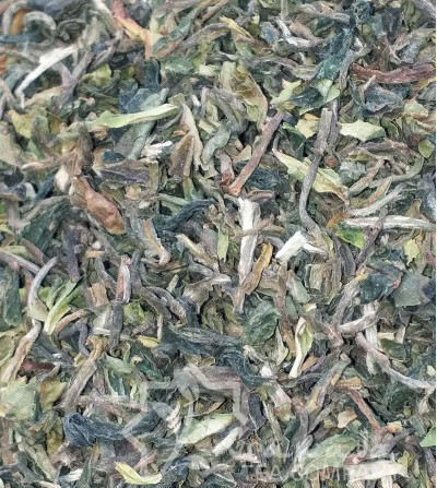 TE DARJEELING EARLY FIRST FLUSH BIO SFTGOP1- ORANGE VALLEY 2019