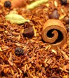 Rooibos Hot - Chocolat